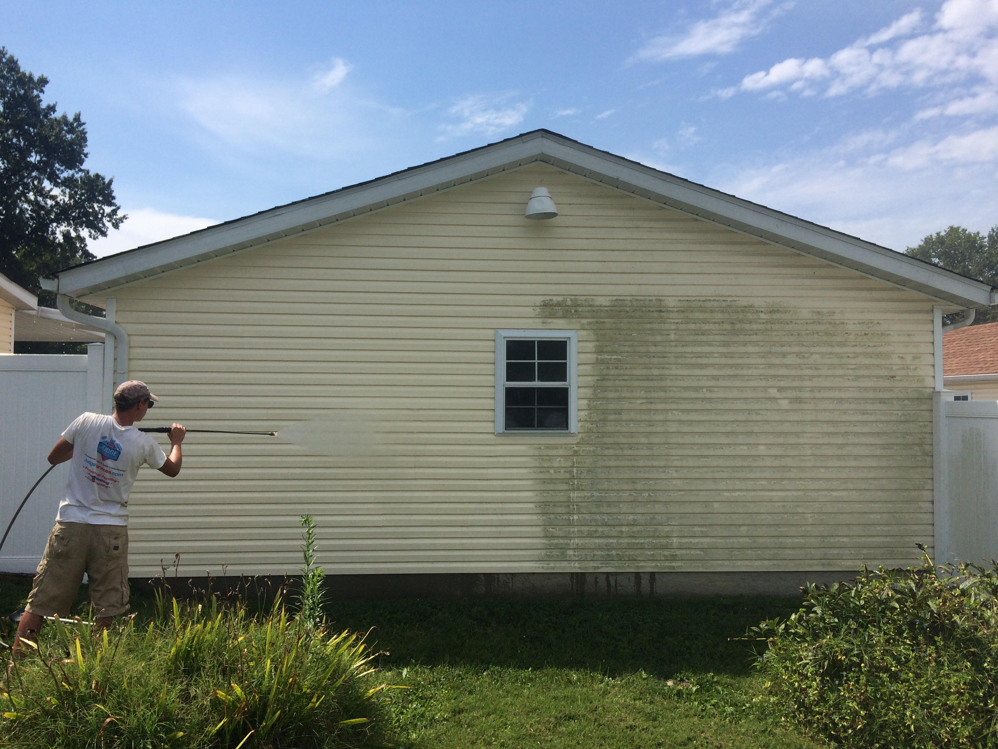 Washing mold off vinyl siding